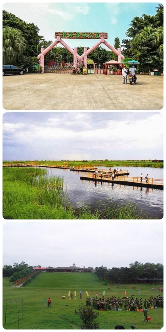 南海大湿地2.jpg